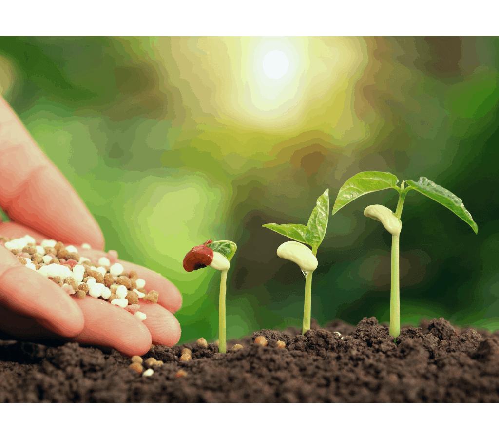 Créer une campagne de lead nurturing efficace